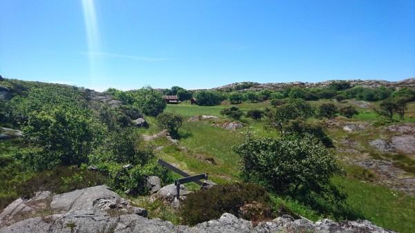 Vy över de fina kulturmarkerna kring Änga på Härön