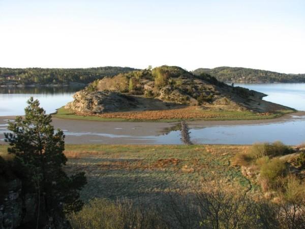 Brattholmen i Halsefjorden hyser många skyddsvärda arter